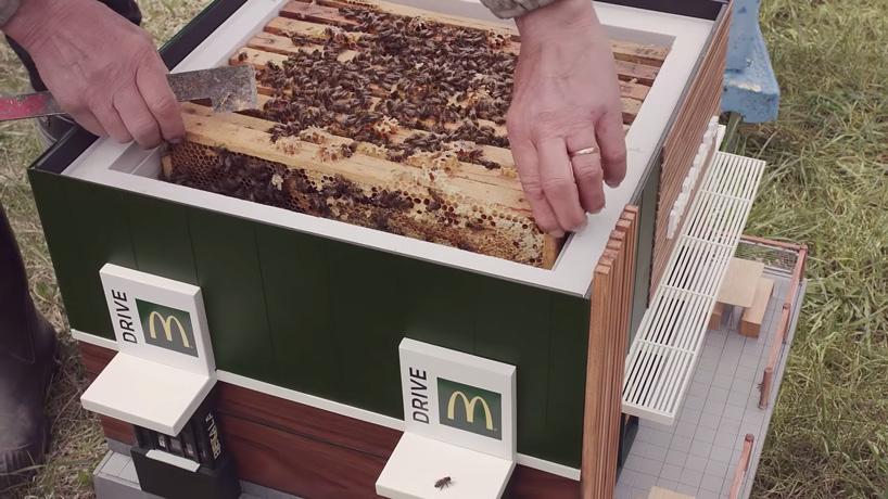 2-mc-donalds-para-abelhas