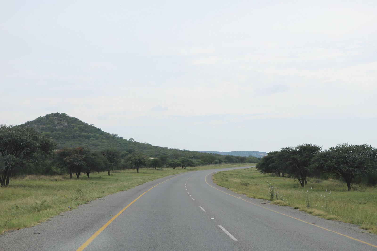 de camino a botsuana