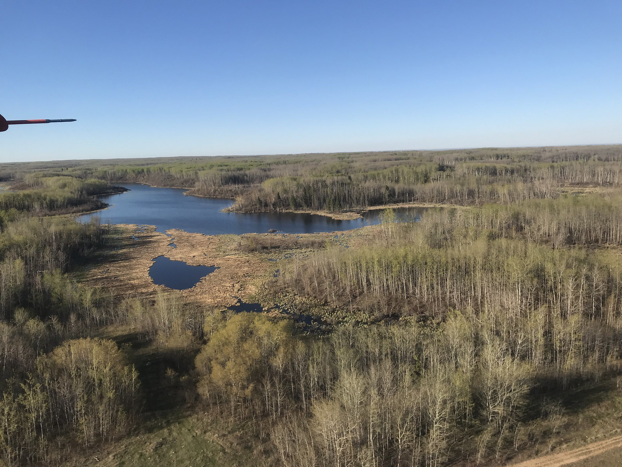 May 2019. Parkland wetland habitat, USFWS