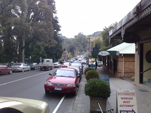 In the Dandenongs, May 2009