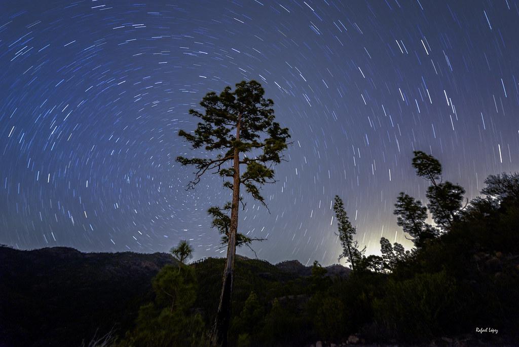 Canarias entre las estrellas