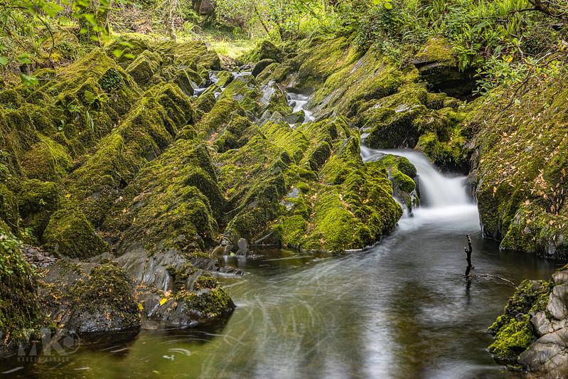 20190529-2019, Irland, Langzeitbelichtung, Wald, Wasserfall-016.jpg