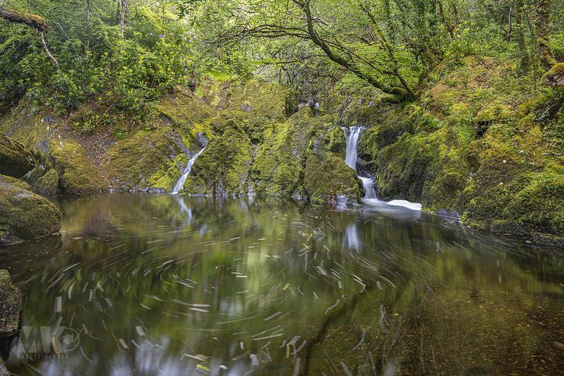 20190529-2019, Irland, Langzeitbelichtung, Wald, Wasserfall-017.jpg