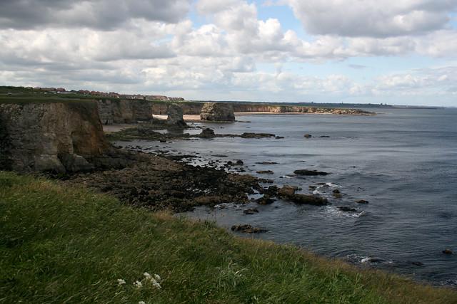 The coast near Whitburn