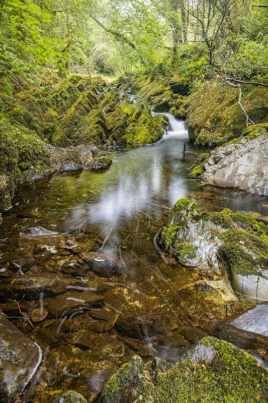 20190529-2019, Irland, Langzeitbelichtung, Wald, Wasserfall-015.jpg