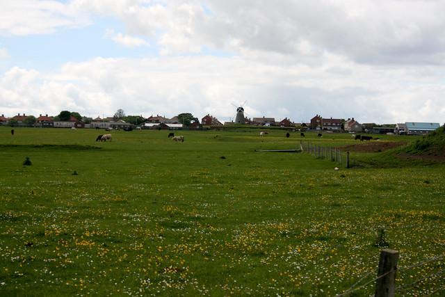 Whitburn from the coast