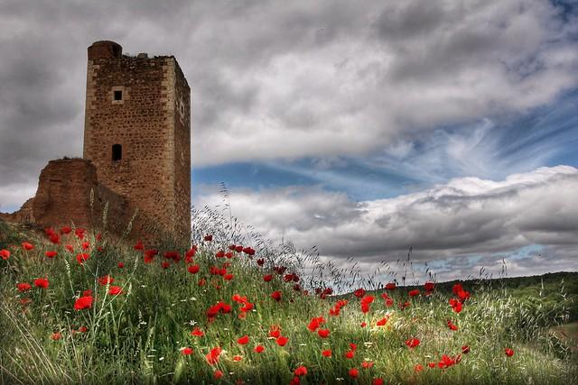 Paseando por la muralla de Daroca (Zaragoza, España)