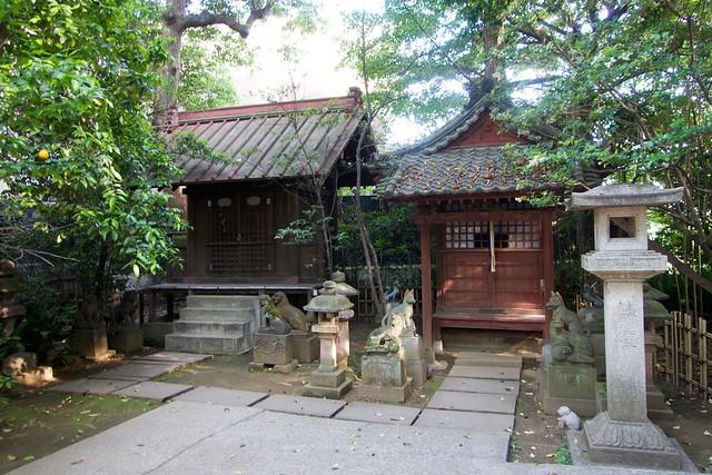 shibuyahikawajinja_013