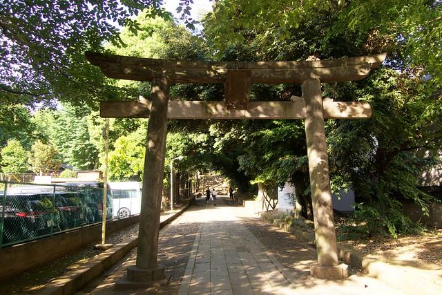 shibuyahikawajinja_005