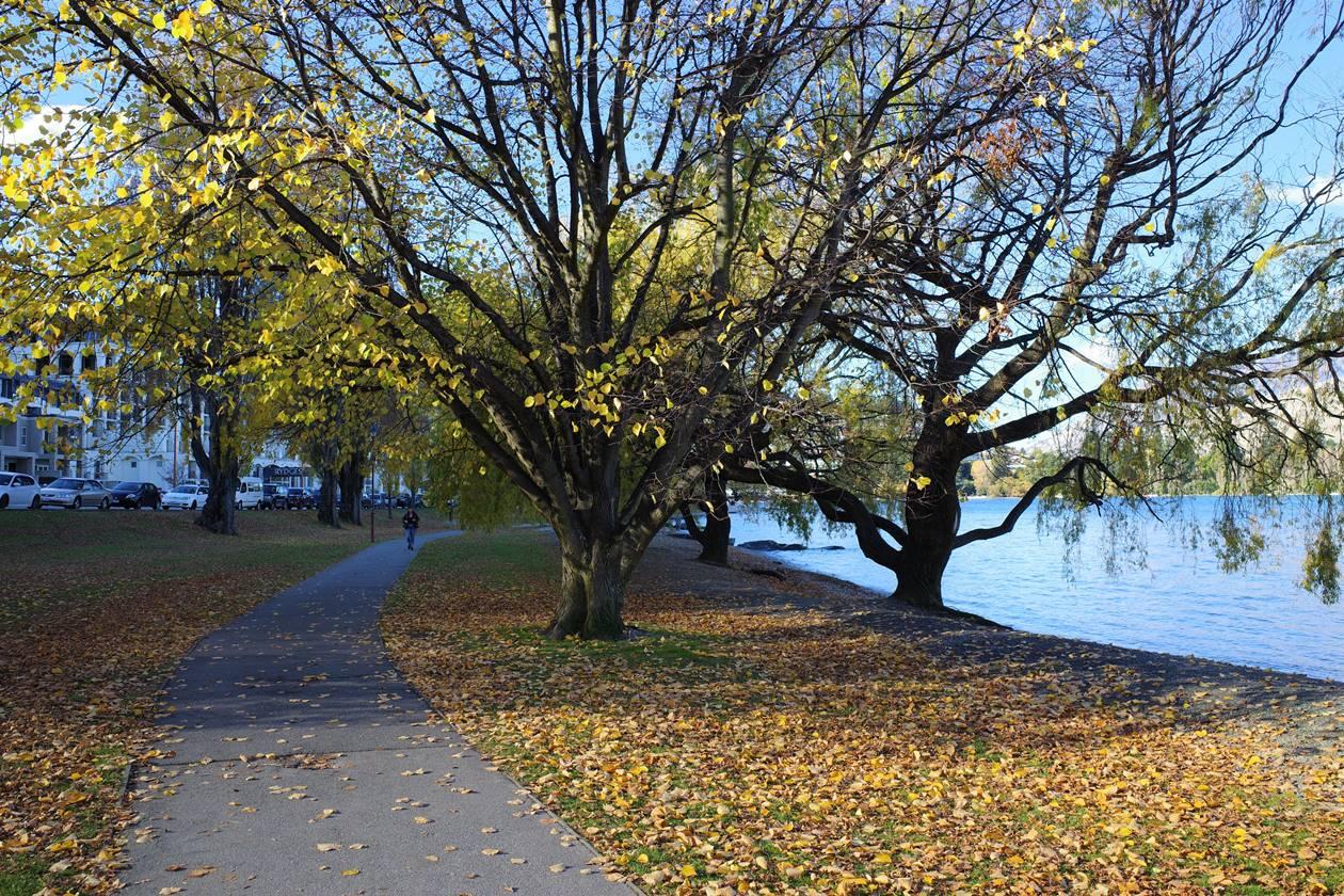 クイーンズタウン湖畔の遊歩道