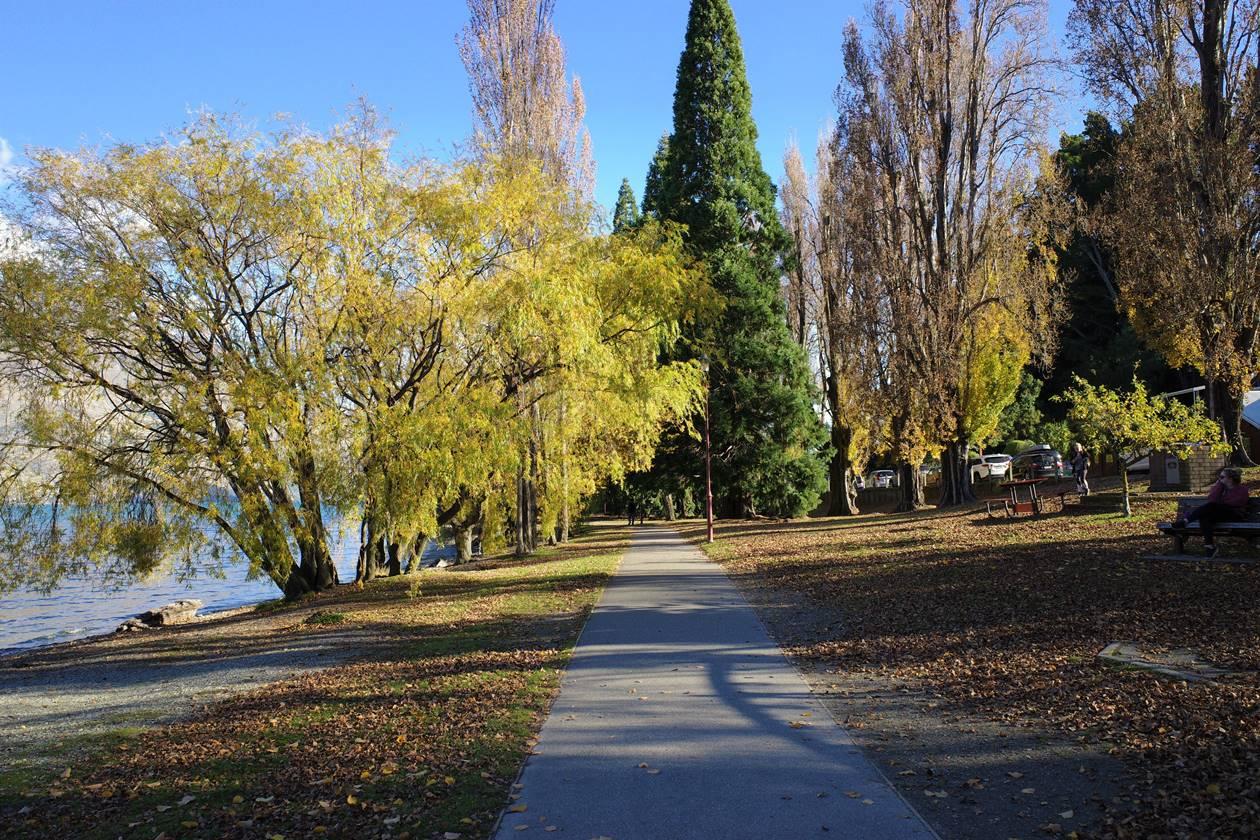 クイーンズタウン湖畔の紅葉