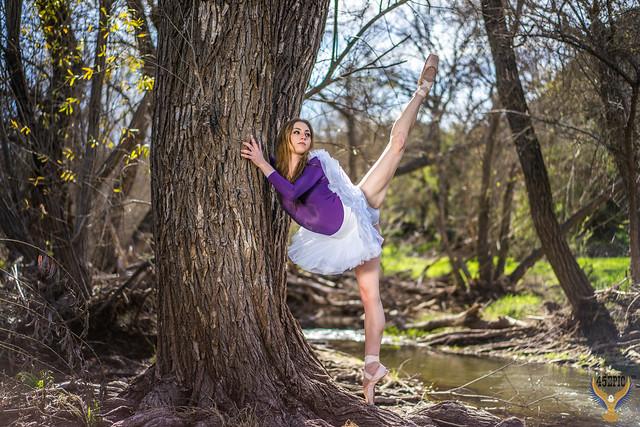 Classical Ballet Dancer Ballerina Pretty Brunette Ballerina Dancer in Pointe Shoes! Pretty Brown Eyes Homer's Iliad Helen Swimsuit Bikini Leotard Ballet Slippers Model! Golden Ratio Comp Sony A7 R Carl Zeiss FE 55mm F1.8 Za E-Mount Lens SEL55F18Z Dancer!