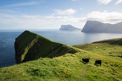 NSchweitzer_FaroeIslands