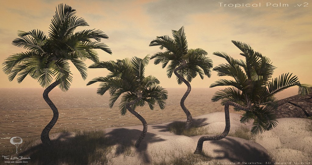 Little Branch Tropical Palm v2