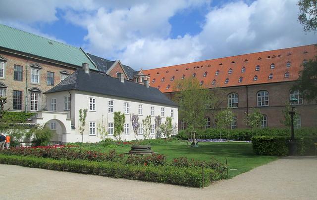 Wisteria on Building Facing Copenhagen Library