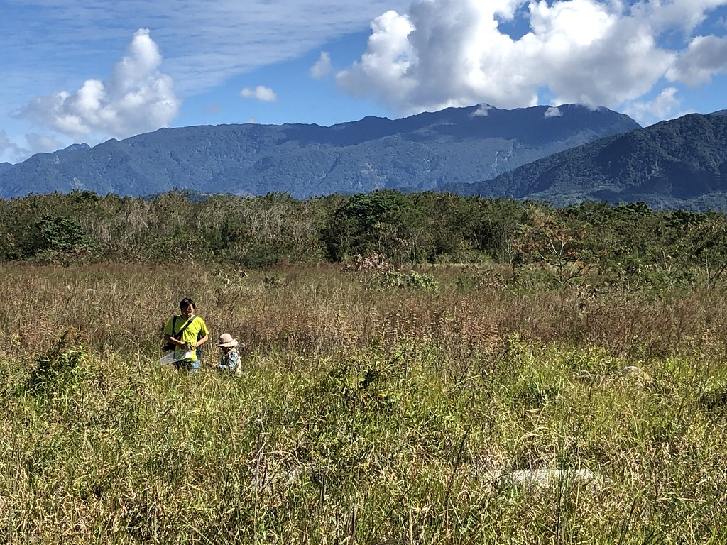 國家植物園方舟計畫動員國內一流的植物研究人員,尋找受脅植物。攝影:廖靜蕙