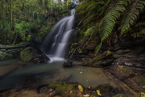 river stream waterfall lushgreen newzealand auckland pohuehue nature landscape nikon1424f28