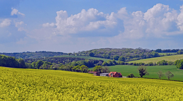 A farm in spring, Hampstead Norreys, Berkshire, England