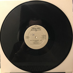 RAW SILK:DO IT TO THE MUSIC(RECORD SIDE-A)