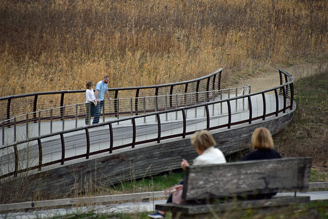 Curves on the Bridge