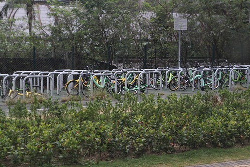 Dozens of share bikes dumped at a bike park in Tung Chung