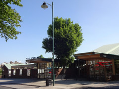 Picture of West Norwood Library And Picturehouse
