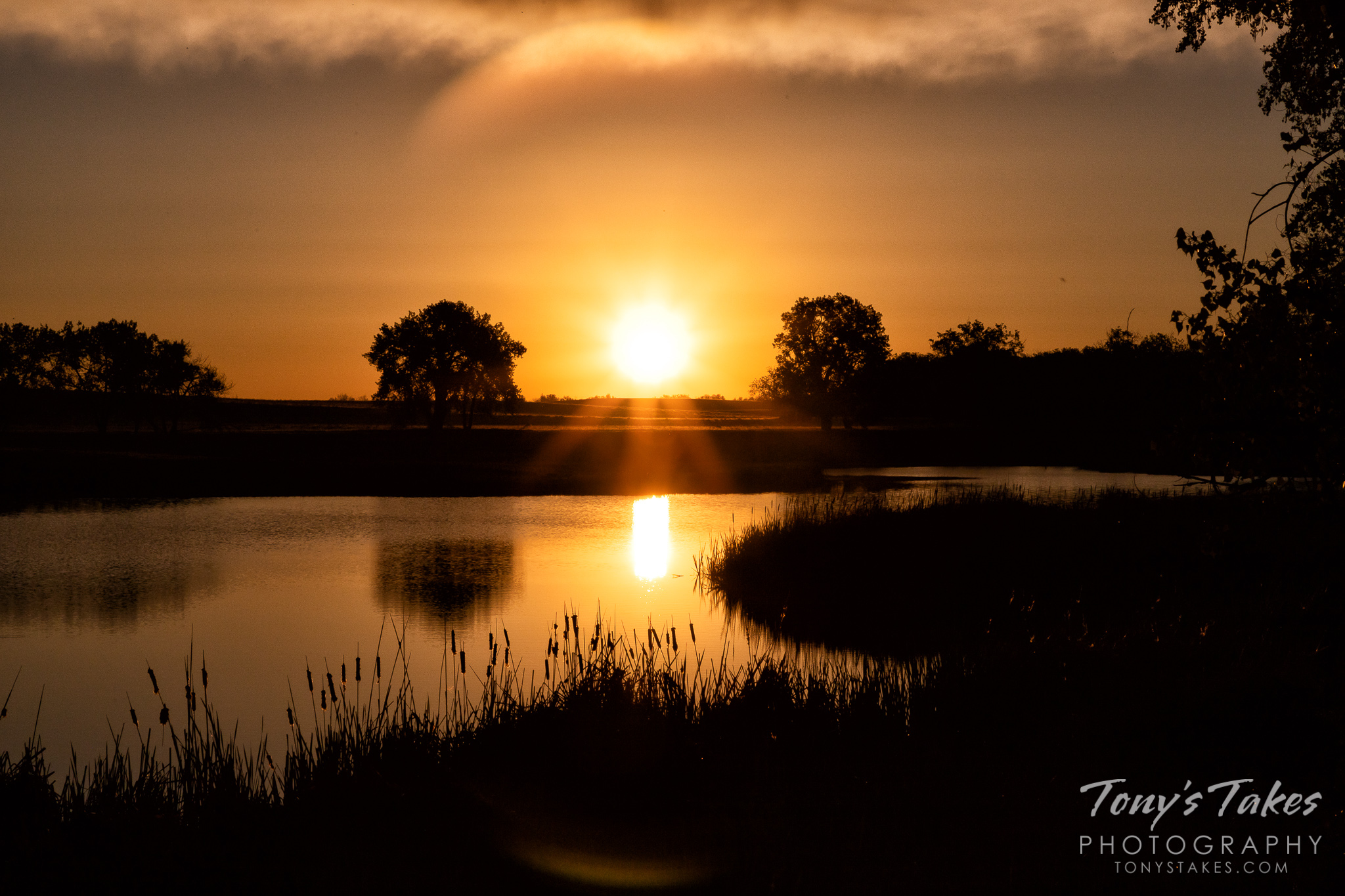 The sun rises at the Rocky Mountain Arsenal National Wildlife Refuge. (© Tony's Takes)