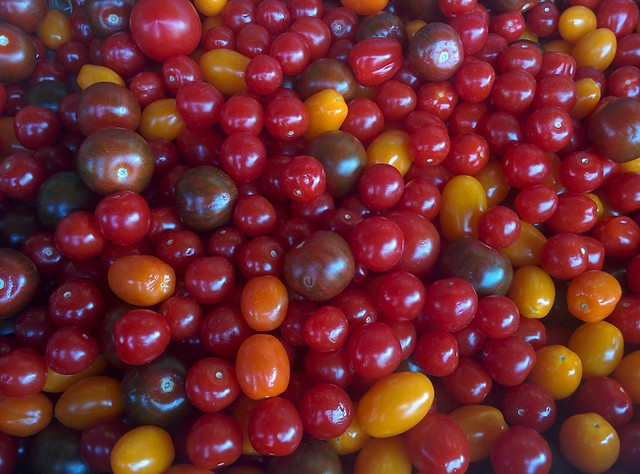 Tomatoes of Pusateri's (2) #toronto #churchstreet #churchandwellesley #tomatoes #tomato #pusateris #latergram