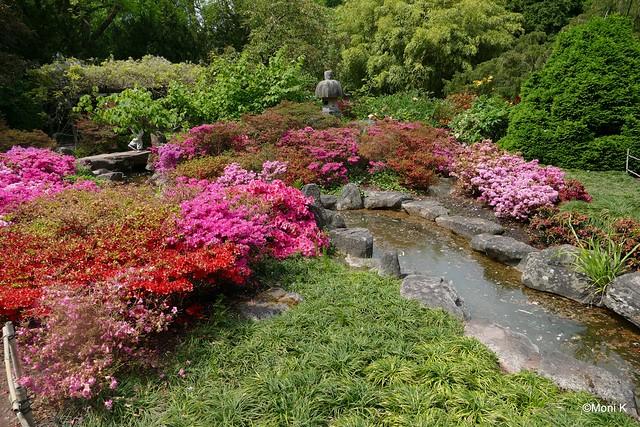 74-japanischer Garten