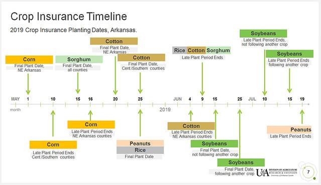 crop insurance timeline