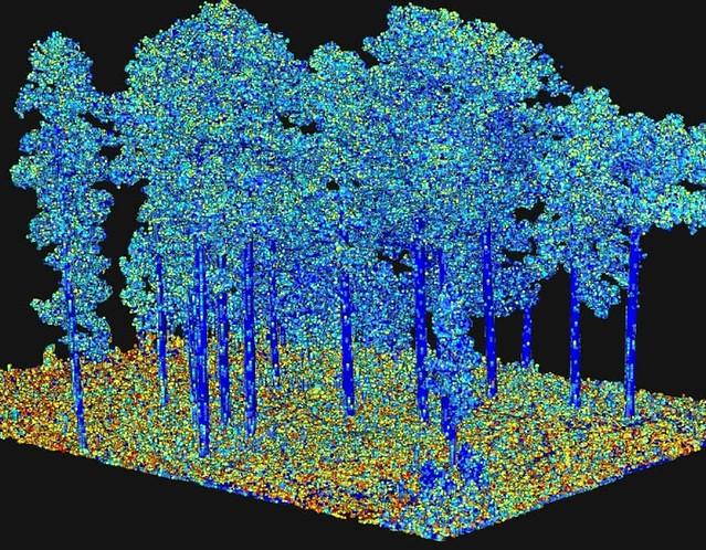 Output from processing of terrestrial laser scanning data