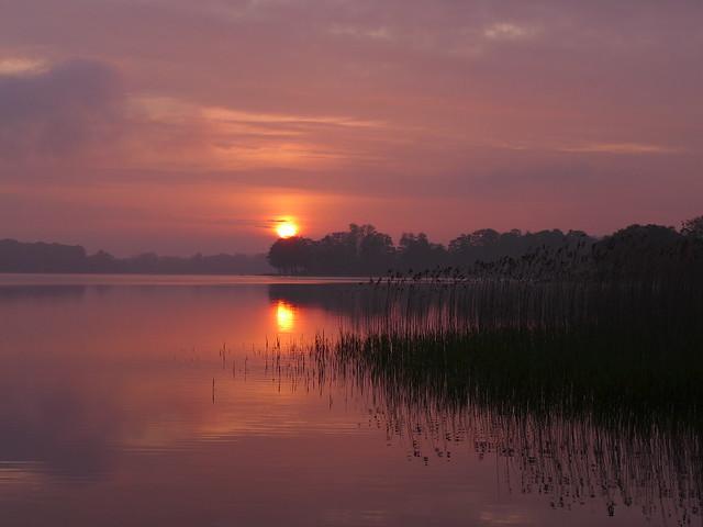Sunrise on Sjælsø
