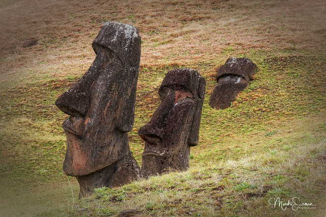The rise and the fall of the Moai