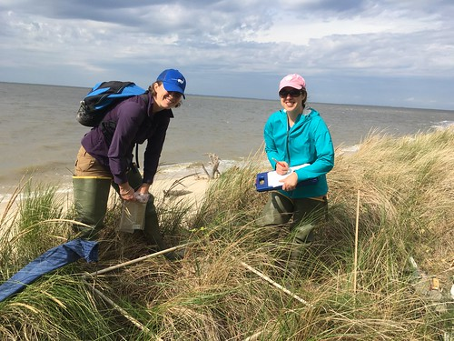 Photo of two women in a marshy shoreline checking information on clipboards