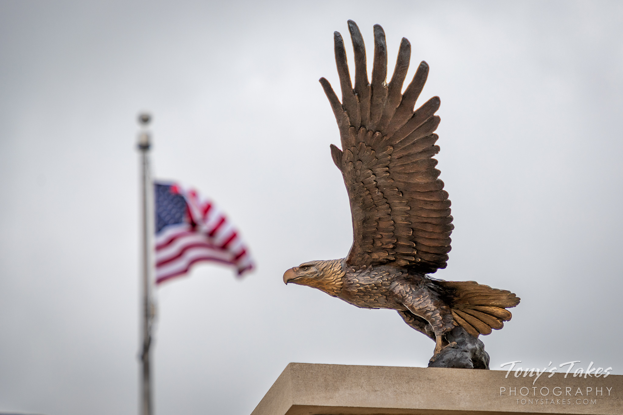 Eagle sculpture and flag at the Thornton Veterans Memorial. (© Tony's Takes)