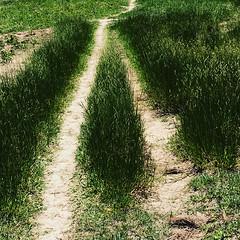 Caminhos que se encontram