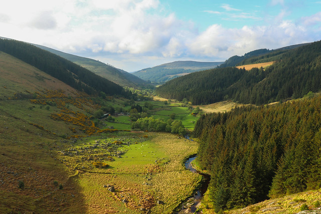 Wicklow valley