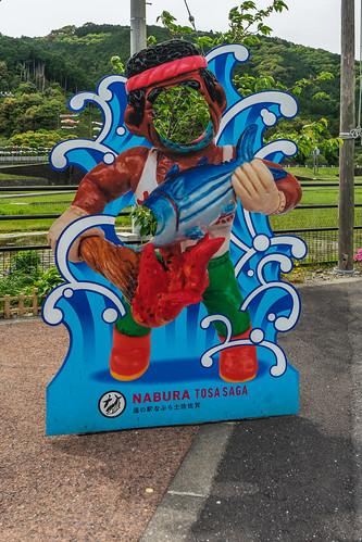 nabura tosa saga facehole board 土佐市 kōchiprefecture 高知県 shikoku 四国 日本 japan bicycletriparoundshikoku 4月 四月 卯月 shigatsu uzuki unohanamonth 2019 平成31年 spring april