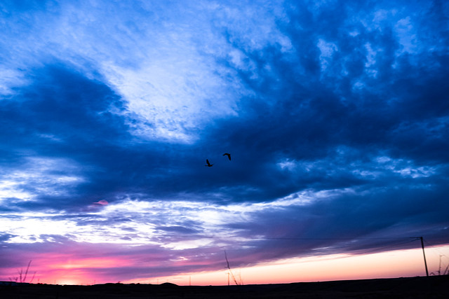 Fly by sunset.