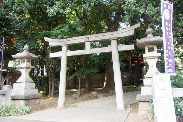 konnouhachimangu_006'
