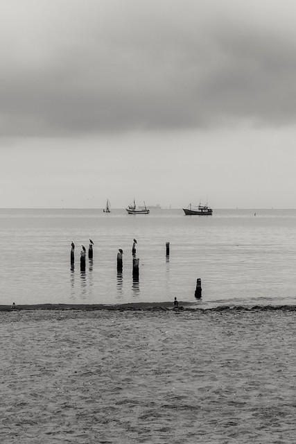 Black and white composition of Paracas bay, Peru