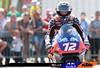 Bezzecchi, Italian Moto2 2019