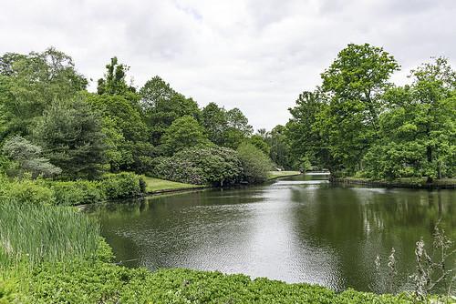 surrey nationaltrust claremontlandscapegarden esher elmbridgeborough leica tree water biogon352zm zeiss