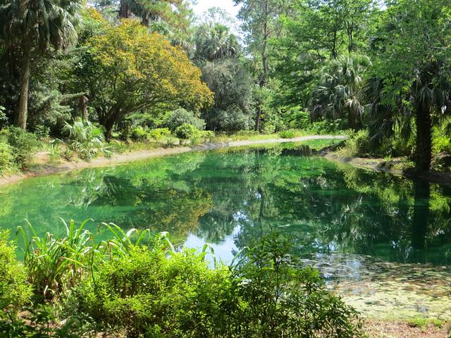 47979629982 62dd213f7f z Pond @ Maclay Gardens SP (2)