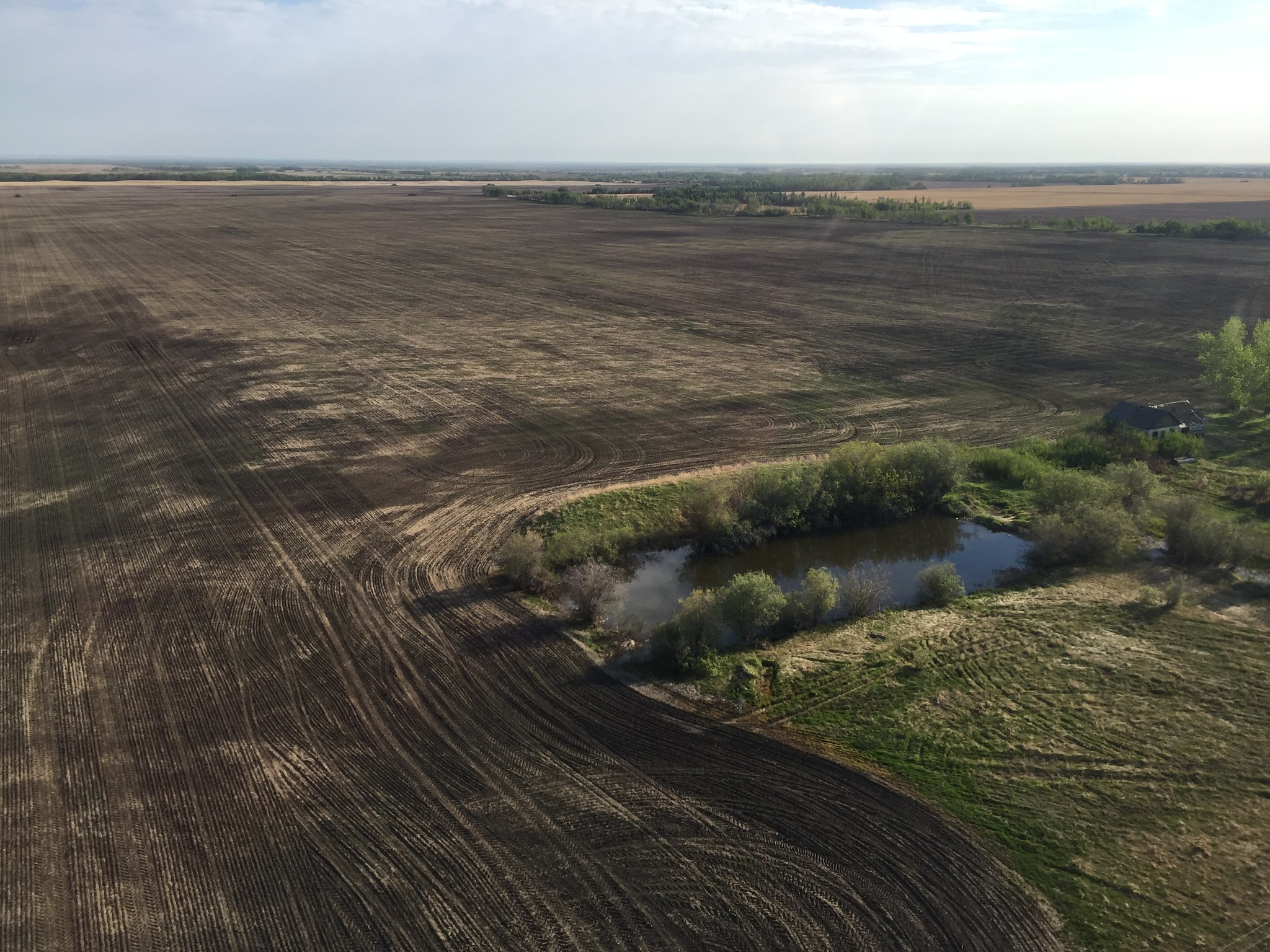 Most habitat in this area consists of stock ponds due to dry conditions. USFWS