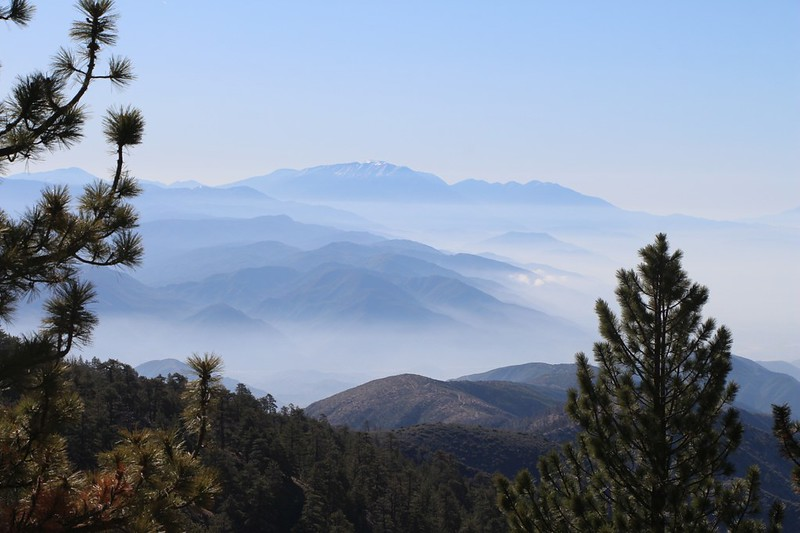 View east toward San Gorgonio Mountain from the PCT east of Wright Mountain