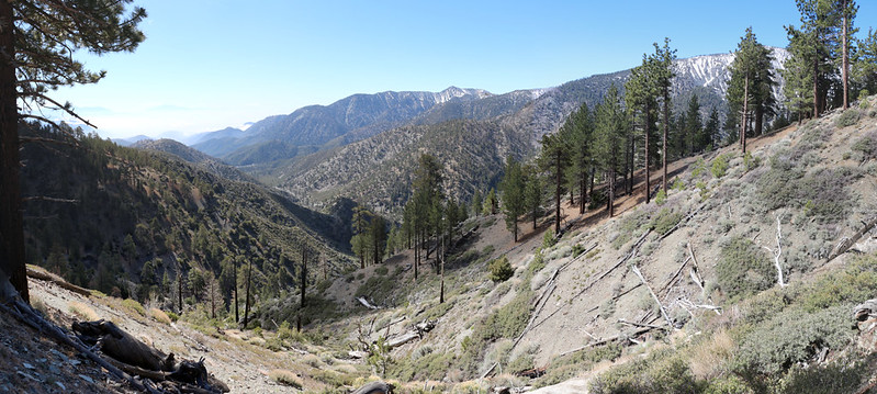 View southeast toward Telescope Peak (center) with the North Fork of Lytle Creek below us, from the PCT