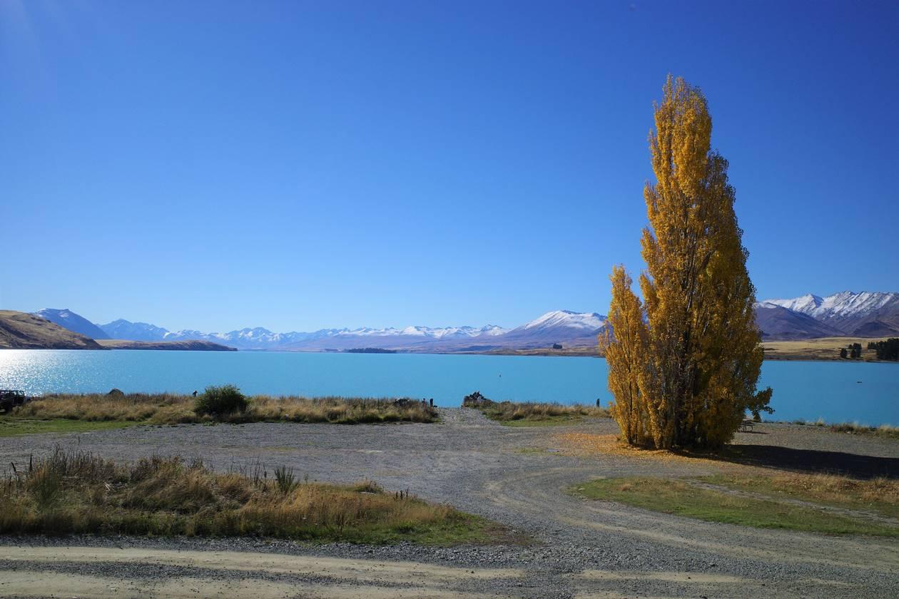 ニュージーランド・テカポ湖と紅葉