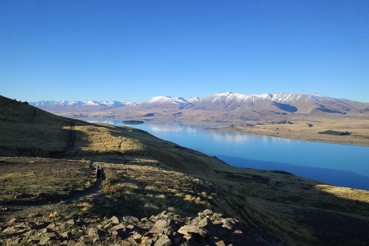 ニュージーランド マウントジョンからのテカポ湖