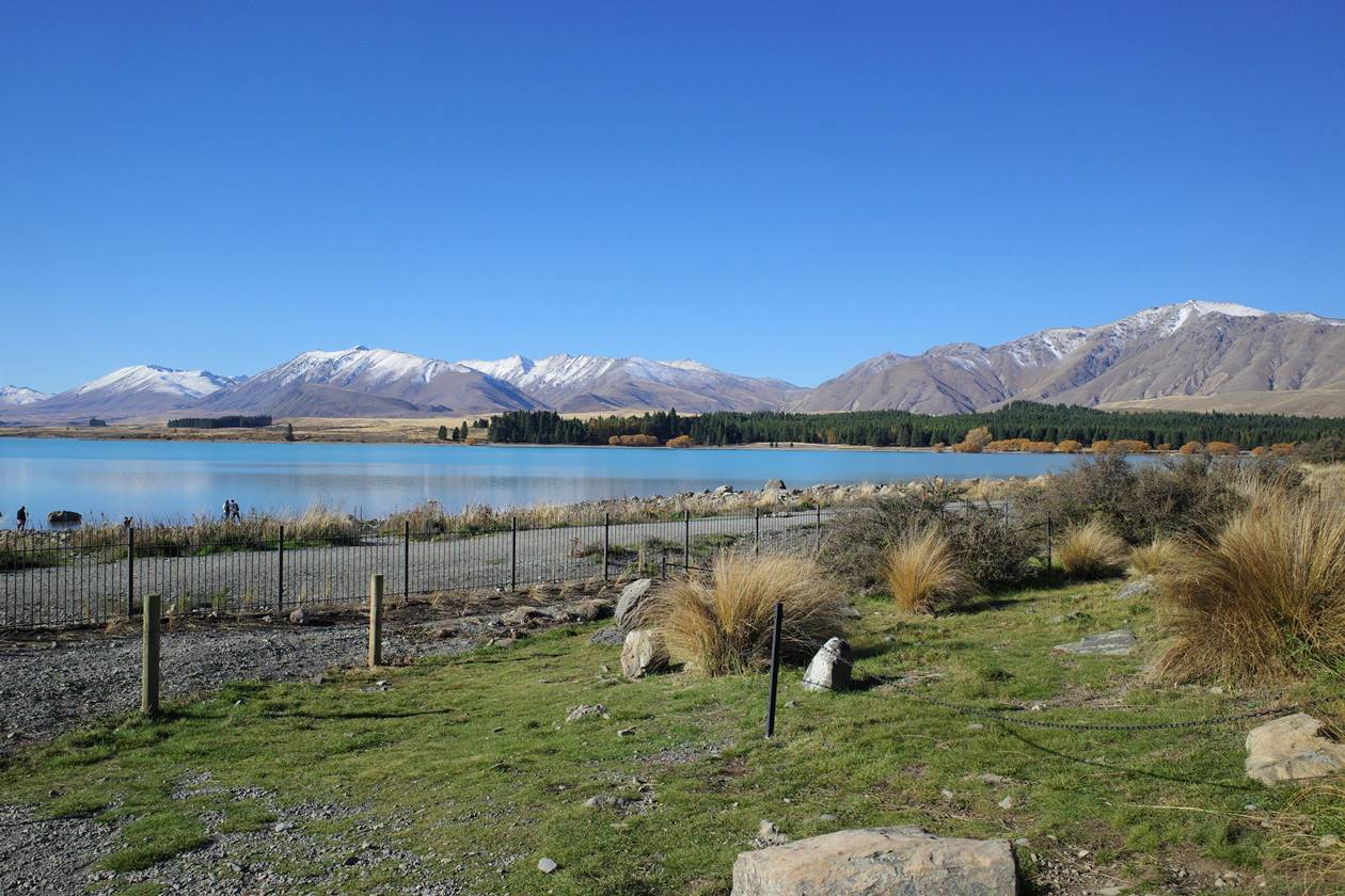 ニュージーランド・テカポ 善き羊飼いの教会の柵